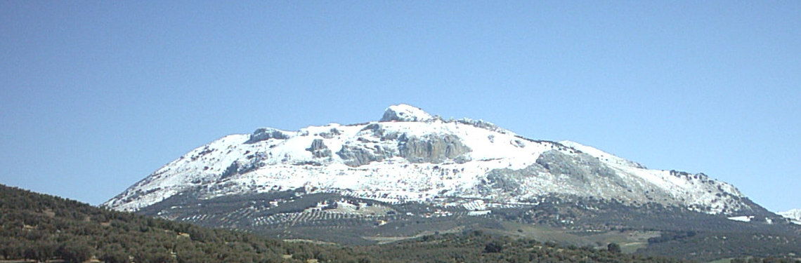 http://www.molinojabonero.com/wp-content/uploads/2014/02/paisaje-1.jpg