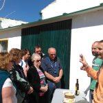 Desmontando los mitos más comunes del aceite de oliva virgen extra (I)