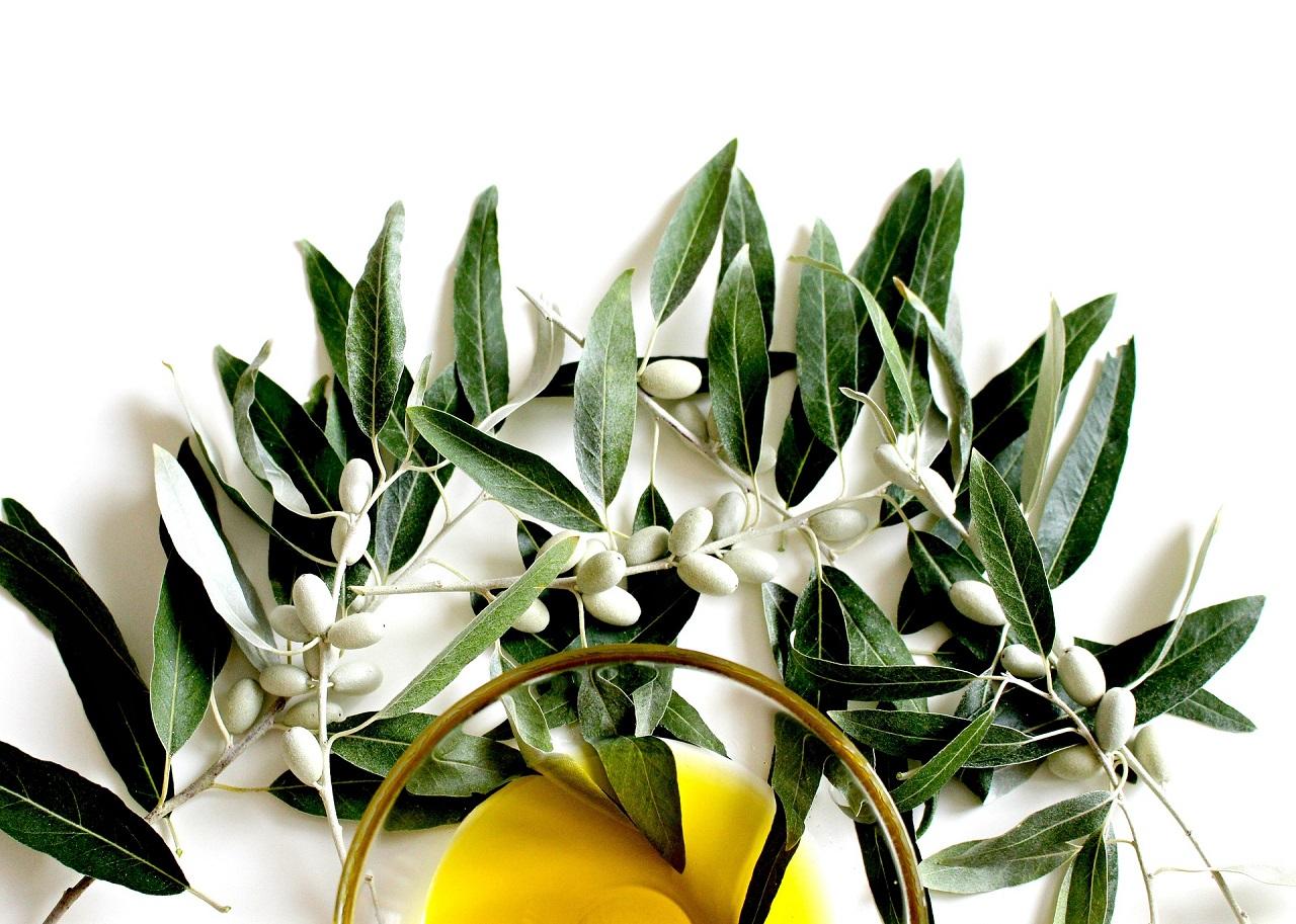 8 curiosidades del aceite de oliva que te sorprenderán